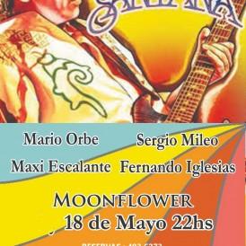 Moonflower 4 y 18 Mayo Dickens